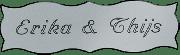 Kunststof naamplaatje zilverkleurig  12.5x4cm
