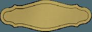 Kunststof naamplaatje goudkleurig 12 x 4.5cm